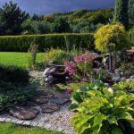 Urządzasz ogród skalny – wybierz najpiękniejsze rośliny!